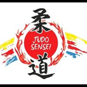 cropped-logo-Sensei-1